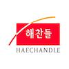 HAECHANDLE